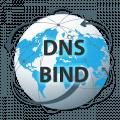 Настройка логов DNS для bind9