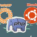 [РЕШЕНО] Обновление PHP до версии 7.4 на Ubuntu Server с NGINX + PHP-FPM + VestaCP
