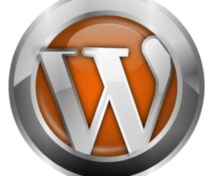 Защищаем WordPress от спам-ботов и авто-ботов.