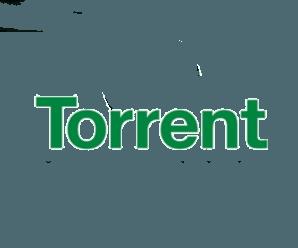 rtorrent — терминальный торрент для Linux